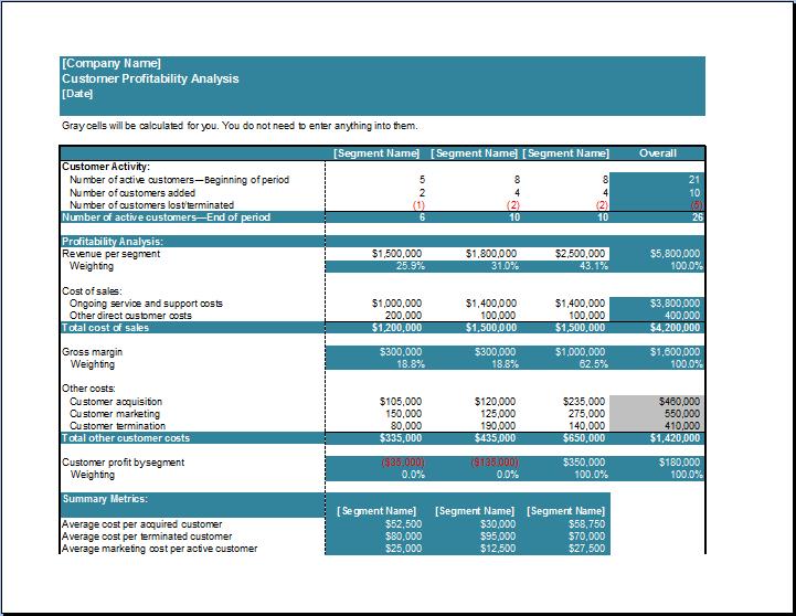 Customer Profitability Analysis Template