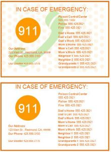 Family Emergency Contact Cards Template
