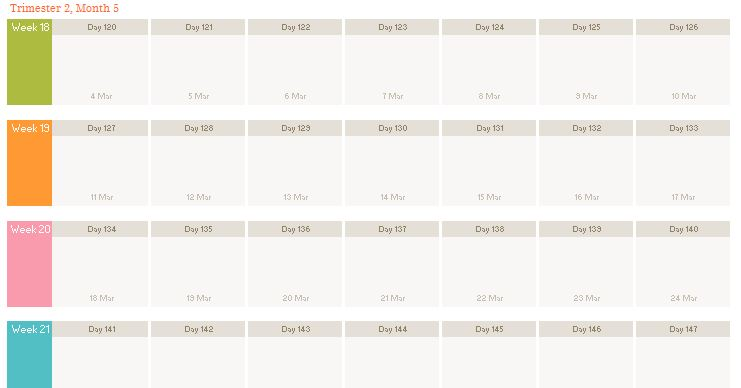 fetal or pregnancy calendar template fetal or pregnancy calendar template