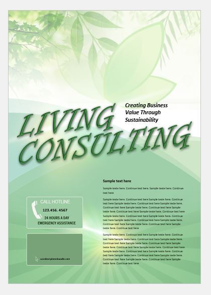 Consultant Business Flyer